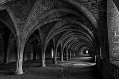 Fountains Abbey (Durham Stephen) Tags: fountainsabbey ripon monochrome moody undercroft sonya73 ruin archedceiling