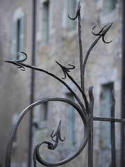 Sur la défensive **----+° (Titole) Tags: metal grille shallowdof titole fence arrow spike peaks spikes 15challengeswinner friendlychallenges