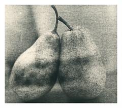 Yesterday's pears (Mark Dries) Tags: markguitarphoto markdries hasselblad500cm extensiontube planar lith lithprinting longexposure agfa brovira fb grade2