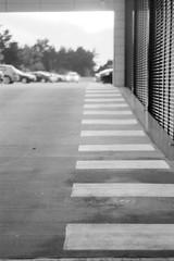 Lines (rATRIJS) Tags: canon model 7 canonmodel7 ilford lc29 ilfotec fomapan 200 fomapan200 bw reflecta proscan 10t reflectaproscan10t jupiter8 50mm rangefinder latvia film analog 35mm