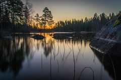 Cold dawn (mabuli90) Tags: finland lake water forest tree sunrise dawn morning nature longexposure rock grass