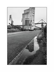 Lorient, zone portuaire (Punkrocker*) Tags: nikon fm2n nikkor ais 28mm 2828 film kodak tmax 400 nb bwfp street city people port harbor keroman lorient anoriant bretagne brittany breizh france