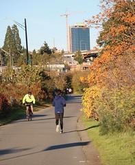 Burke Gilman Trail (Seattle Department of Transportation) Tags: bike sunny burkegilman sdot seattledepartmentoftransportation run nikiseligman