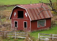 Magical Old Barn (Diane Marshman) Tags: barn building old vintage deteriorated red siding wood metal roof windows rural country setting fall pa pennsylvania state nature autumn season grass fence tree weathervane unicorn horses
