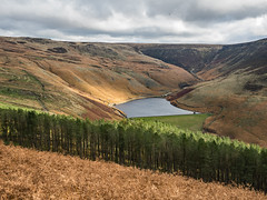 Greenfield Reservoir (Craig Hannah) Tags: saddleworth pennine peakdistrictnationalpark outdoors countryside autumn fall craighannah october 2019 canon landscape peakdistrict dovestones chewvalley moorland uplands greenfieldreservoir trees greenfield westriding yorkshire oldham greatermanchester england uk photography
