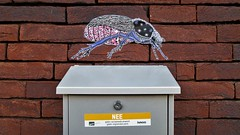 Pol Cosmo / Mariakerke - 25 okt 2019 (Ferdinand 'Ferre' Feys) Tags: gent ghent gand belgium belgique belgië streetart artdelarue graffitiart graffiti graff urbanart urbanarte arteurbano ferdinandfeys polcosmo