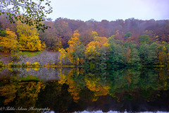 Söderåsens Natioonalpark, Odensjön (Tubbe Sebom) Tags: fall autumn lake michaelmyers fujifilm fujifilmxt2