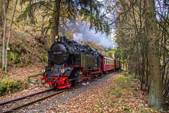 HSB 99-6001, Drahtzug (cellique) Tags: selketalbahn hsb harzerschmalspurbahn treinen eisenbahn schmalspur harz drahtzug 996001 zuge railway steamtrain spoorwegen train smalspoor