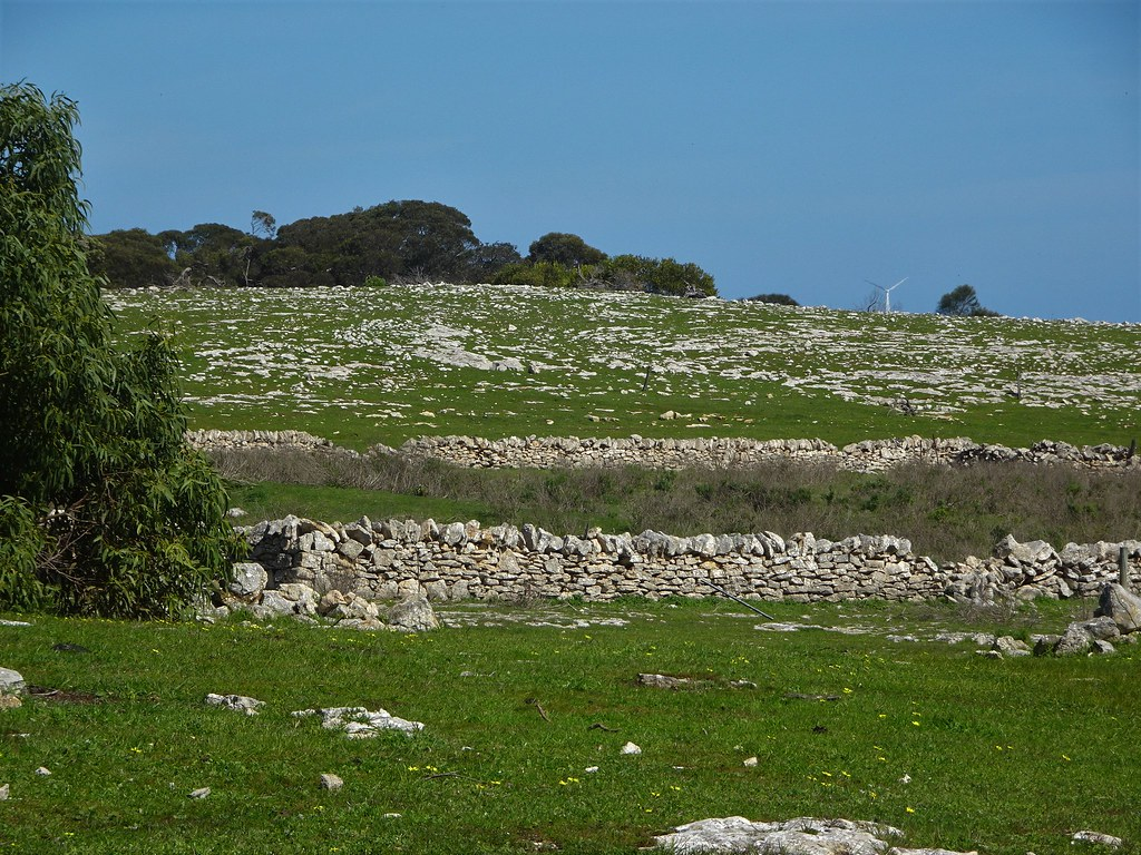 Port Lincoln. Stone walled enclosure for sheep near where the Mikkira wool shed stood.