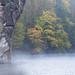 Misty Autumn Morning at Externsteine