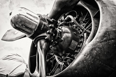 (E. Nelson) Tags: b24 liberator consolidated consolidatedb24jliberator b24j witchcraft worldwarii wwii engine ericnelson exnimages collingsfoundation wingsoffreedom 2019 propeller prop blackandwhite sepia b24witchcraft historic vintage american
