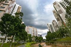 Building Thunderstorm (kiwi photo lover) Tags: singapore citystate equator southeastasia convection thunderstorm clouds cumulus cumulonimbus tropical heat rain water life watercatchment reservoirs yishunnewtown junctionnine hdb highrise flats apartments