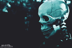 Boo! (Hi-Fi Fotos) Tags: skeleton skull halloween spooky scary decoration bones dead nightmare october trickortreat boo nikon d7200 dx hififotos hallewell