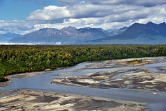 The Braided Channels of Water with the Chulitna River as It Flows Through Denali State Park (thor_mark ) Tags: alaska2019 alaskarange alaskayukonranges azimuth1 blueskies bluesskieswithclouds braidedchannel braidedriver capturenx2edited chulitnariver cloudsaroundmountainpeaks cloudsaroundmountains colorefexpro day2 denalinationalparkpreserve denalinationalparkandpreserve denalistatepark denaliviewpointsouth evergreentrees evergreens hillsideoftrees imagecapturewitharsenal landscape lookingnorth mountainpeak mountains mountainsindistance mountainsoffindistance mountainside nature nikond800e outside partlycloudy portfolio project365 river rollinghillsides sunny travel trees westcentralalaskarange witharsenal alaska unitedstates
