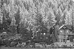 Trees in Light (markjwyatt) Tags: fujifilmxt2 fujinon1855mmzoom laketahoe california trees houses light lake monochrome luminescent tahoesep2019