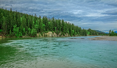 Mouth Of Kicking Horse River (http://fineartamerica.com/profiles/robert-bales.ht) Tags: canada forupload places river scenic fkickinghorseriver canadianrockies britishcolumbia jameshector kickinghorsepedestrianbridge golden nature green tree water travel forest stream outdoors trees beautiful longexposure vegetation canadian destination rocks attraction conservation landscape pine mossy mountain destinations wilderness robertbales columbiariver
