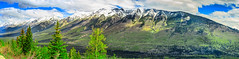 Panoramic Rockies Mountains (http://fineartamerica.com/profiles/robert-bales.ht) Tags: canada fineart flickr landscape photouploads places scenic sky natural nature park bc travel landmark evergreen outdoors columbia kootenay rockies mountains canadian british trees clouds peak panorama panoramic national forest mountain rocky alberta beauty jasper banff rocks sunlight icefield range robertbales canadianrockiesmountains kooktenaynationalpark britishcolumbia