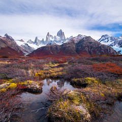 Swamps of Patagonia (Maddog Murph) Tags: patagonia fjords fitz roy mountain swamp water bog swampland mountains argentina fall autumn stream calm reflection el chalten fauna nature