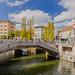 Three bridges in Ljubljana (Tromostovje, Triple Bridge)