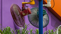 Hot Disney (Theen ...) Tags: hongkong disneyland cooling toystoryland outdoor fans weather humid hot