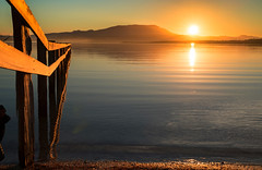 Mortimer Bay reflections (camperrin) Tags: mortimer bay tasmania australia sunset reflection sun sky water sea ocean dusk fence beach light nature outside