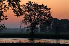IMG_9945 (geraldtourniaire) Tags: eos6d ef 70200l 70200mm franken mittelfranken sonnenaufgang natur nature landschaft l