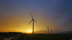 PAYSAGES DE PICARDIE 311 (aittouarsalain) Tags: picardie paysage landscape aurore aube levant campagne champs nature éoliennes ciel soleil automne matin jour