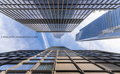 Hudson Yards (20191026-DSC07523) (Michael.Lee.Pics.NYC) Tags: newyork hudsonyards architecture shiftlens sony a7rm4 laowa12mmf28 magicshiftconverter