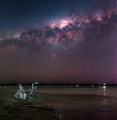 Milky Way at Herron Point, Western Australia (inefekt69) Tags: herron point collins pool mandurah water panorama stitched mosaic msice milky way cosmology southern hemisphere cosmos western australia dslr long exposure rural night photography nikon stars astronomy space galaxy astrophotography outdoor core great rift ancient sky 50mm d5500 landscape tracked ioptron skytracker hoya red intensifier dead tree