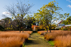 Photo of Scampston Walled Garden, near Malton
