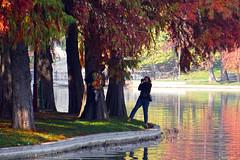 The romantic photograph (Dumby) Tags: landscape bucurești românia sector3 ior titan autumn fall portrait lake park nature outside