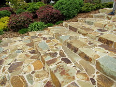 Stone steps at Wingspread (Pat M2007) Tags: cf19 stone