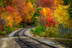 Scenic railroad (FotoFloridian) Tags: autumn fallcolors forest journey leaf multicolored newhampshire nopeople northconway outdoors railroadtrack red road scenics sony train transportation travel tree whitemountains yellow a6400 alpha landscape nature