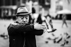 the hand that shows or directs (Gerrit-Jan Visser) Tags: amsterdam blackandwhite bnw directs hand man pigeon shows streetphotography fly flight bird mystery falun gong damsquare tai chi