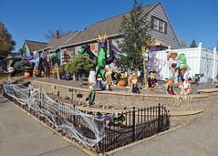 Halloweenie Home (DewCon) Tags: halloween halloweendecorations