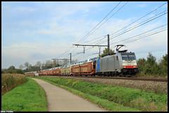 186 453 Lineas // 11-10-2019 Zichem (Erik Piussi) Tags: l35 lineas autotrein railpool traxx