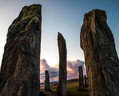 Callanish Standing Stones (Carol Marshy Photography) Tags: hooded crow callanish standing stones isle harris