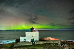 Slightly surprised ... (Mike Ridley.) Tags: aurora auroraborealis bamburghlighthouse bamburgh northumberland northumberlandaurora sonya7s mikeridley nature nightphotography