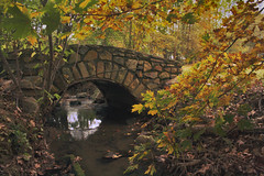 Autumn Bridge (jeffersonellis) Tags: old rustic rural bridge tree trees historic historical history autumn fall yellow forest