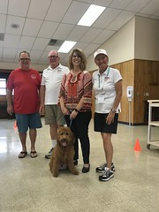 Bently just passed Pet Partners Therapy dog test.
