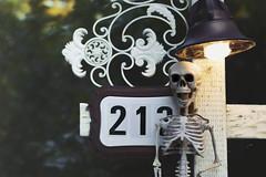 two one boo (rockinmonique) Tags: ferintoshbb skeleton fence bokeh light cobwebs halloween moniquewphotography canon canont6s tamron tamron45mm copyright2019moniquewphotography