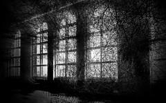 mystical (christikren) Tags: abstract black christikren absoluteblackandwhite darkness mystical dark art monochrome noiretblanc photography sw windows mystery