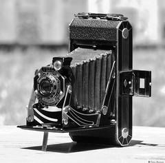 Art Deco Kodak Six-20 (620 Film) Bellows Camera (Evan Lannen) Tags: kodak six20 620 film art deco 1920s 1930s camera