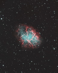 The Crab Nebula (AstroBackyard) Tags: astrophotography space nebula crab m1 messier 1 deep sky telescope night universe skywatcher apo