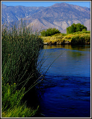 OWENS RIVER & THE WHITE MOUNTAINS (Gary Post) Tags: owens river the white mountains