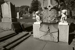 Koebler (Loon Man Returns) Tags: queens cemetery cemeteries lutherancemetery hunter huntingdogs grave tombstone
