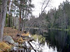 Helvetinjärvi Nationalpark (PeepeT) Tags: helvetinjärvinationalpark helvetinjärvenkansallispuisto suomenluonto luontokuvaus naturephotography finnishnature syksy autumn isohelvetinjärvi