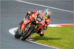 Photo of #25 Josh BROOKES  On a: Be Wiser Ducati  - Overall Series Runner Up