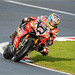 #25 Josh BROOKES  On a: Be Wiser Ducati  - Overall Series Runner Up