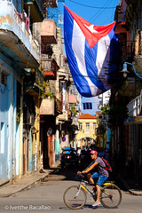 Cuban flags, people and aged buildings in Old Havana (ivetthe1) Tags: cuba habana havana aged america antique architecture attraction bicycle building caribbean city cityscape color colorful communism communist cuban culture decay destination downtown flag grunge grungy heritage historic history icon iconic latin lifestyle national old oldhavana people person revolution scene shabby sign socialism socialist street summer sunny symbol tourism tourist travel tropical typical urban vacation vintage weathered worn